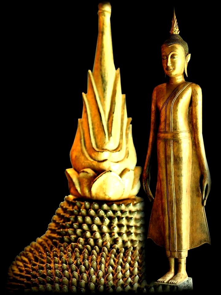 Extremely Rare Early 18C Wood Standing Laos Buddha #DW054