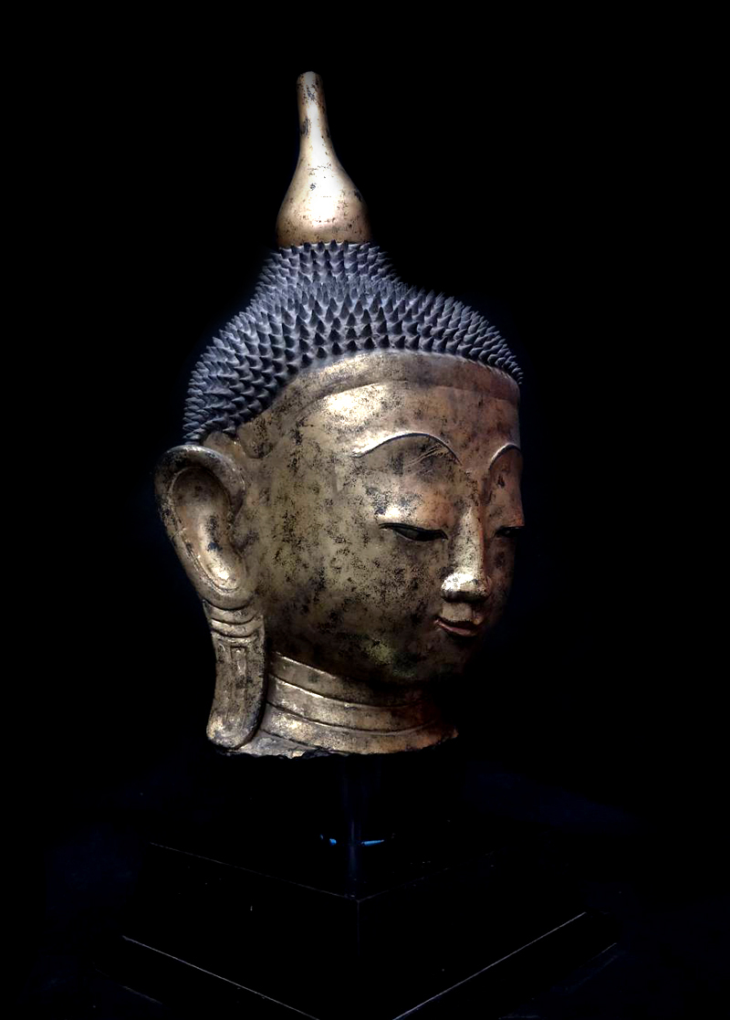 Extremely Rare 18C Shan Burma Buddha Head #OF009-2